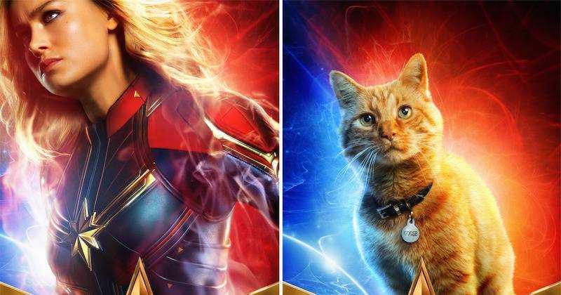 Goose-Flerken và Captain Marvel